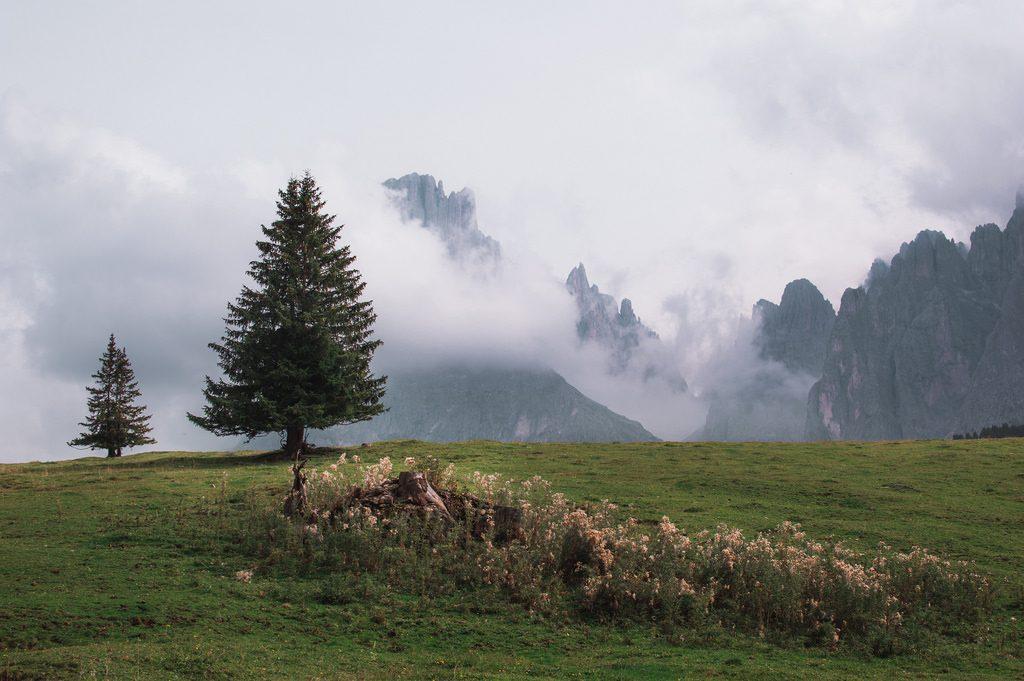 Misty mountain landscape in the Dolomites, near Seier Alm.