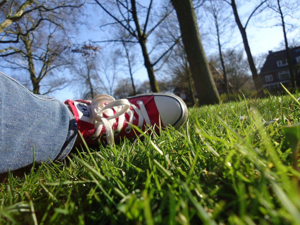 Relaxen in het gras (relaxing in the grass)
