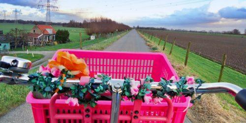 Tips voor een vakantiegevoel in Nederland (tips for a staycation: hodilday at home)