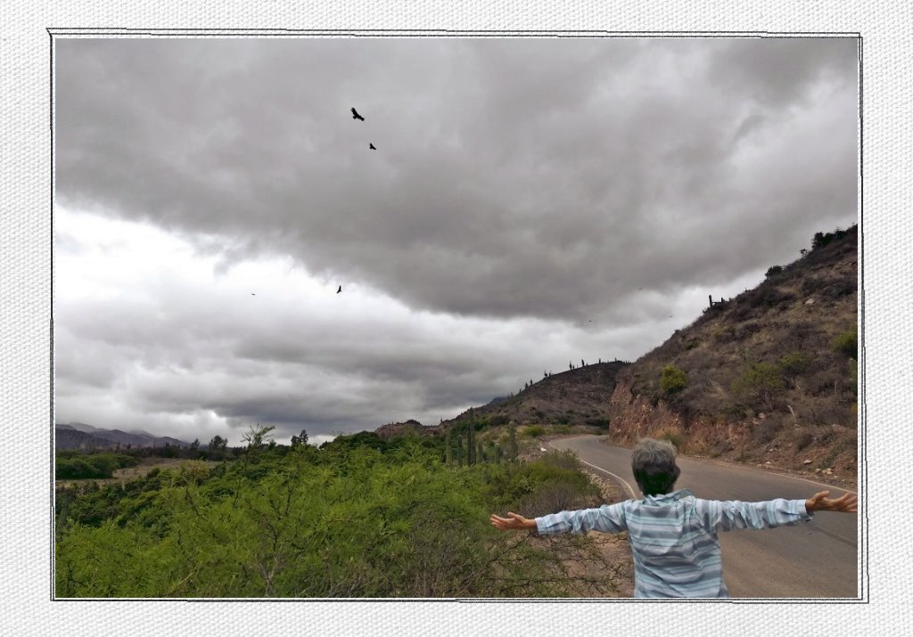 Wild condors flying in the grey and cloudy sky with Katja's aunt in the forefront, spreading her arms like wings.