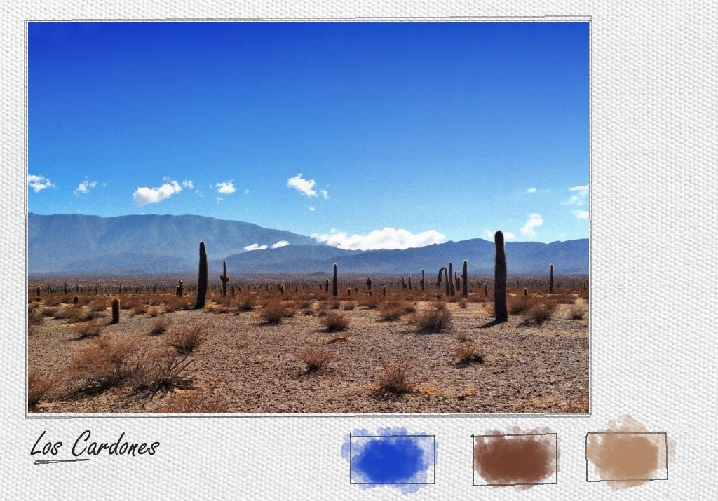 The cacti in Los Cardones national park in Northern Argentina