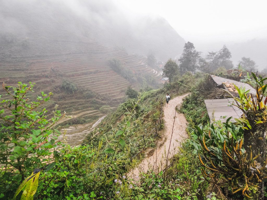 The green landscape in Sa Pa, Vietnam on a rainy and foggy day