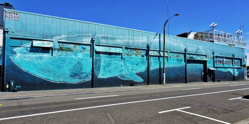 A mural of a whale in New Zealand, his insides filled with plastic, part of the Sea Walls street art project