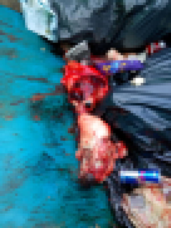 A pixelated image of animal carcasses, disposed in the trash.