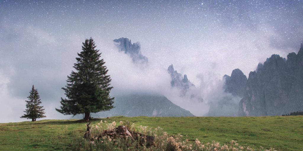Unexpected nature facts about planet Earth: natural landscape with trees and mountain in the background, including a starry sky. (Natuurfeitjes over planeet aarde)