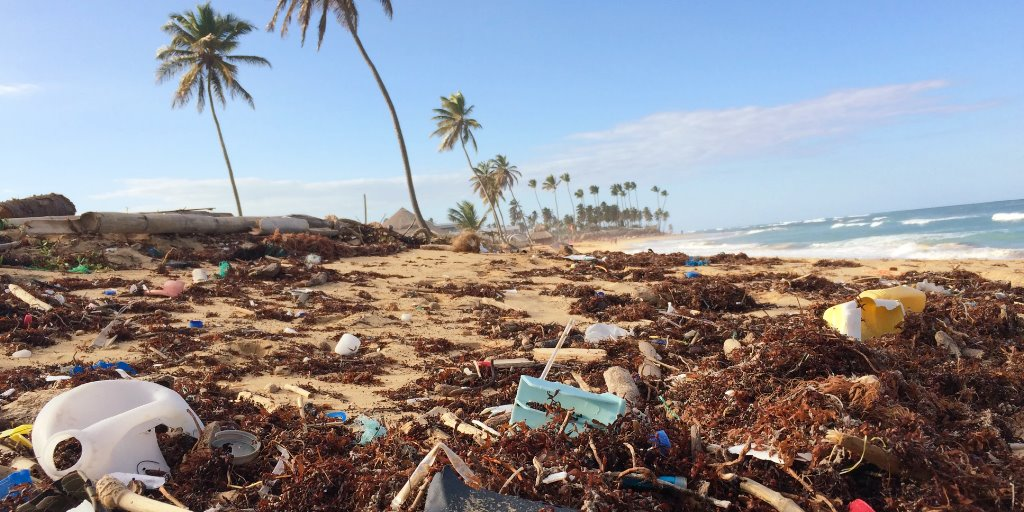 A beach with palm trees littered with plastic and other types of trash